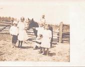 Vintage Photograph - Children and a Horse - Vernacular, Ephemera, Old Photo (A)