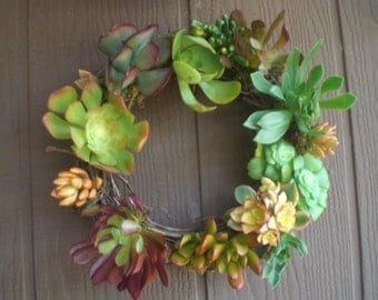Season of Color Growing Succulent Plants  Grapevine Wreath...Simple Living Beauty...Spanish Moss and Grapevine Garland Living Wreath