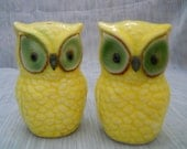 Green Eyed Owls - vintage, collectible, birds