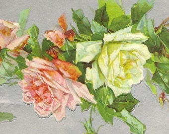 Pink and White Roses on Silver Background Catharina Klein  Lightly Embossed Antique Postcard 1911