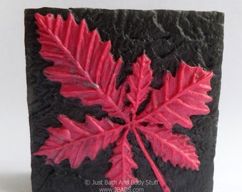 Leaves Soap Bar - You pick the fragrance & colors