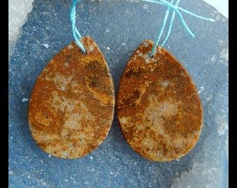 Ocean Jasper Earring Bead,35x24x3mm,11.8g