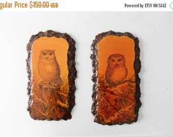SALE owl art, vintage owl wall hangings, rustic owl paintings
