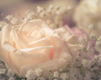 Rose Floral Photography soft,delicate,peach rose,elegant floral print,baby's breath,soft pink,dreamy,girly,baby nursery,feminine home decor