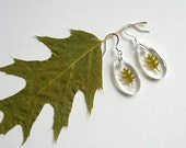 Real Oak Leaf Woodland Earrings - botanic jewelry, pressed leaves, oak leaf, green, leaf earrings, small earrings, natural, eco, ooak, gift