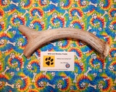 "Organic Jumbo Deer Antler Dog Chew ""Made in Montana"" (Lot P19)"