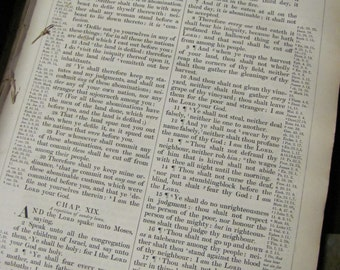 """Antique Bible - Circa 1869 - 12 Pages from a Large Size Bible  - 9"""" x 12"""""""