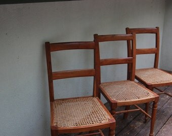 Vintage Rosewood and Cane Chairs