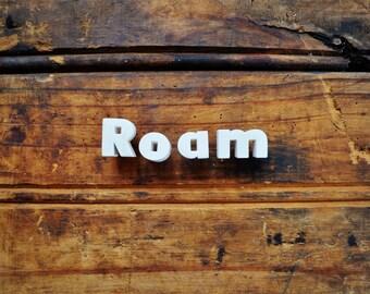 ROAM - Vintage Ceramic Push Pins