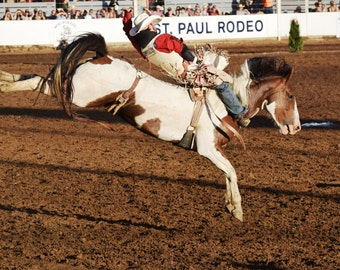 St Paul Rodeo Bareback Bronc Riding Picture Greeting Card