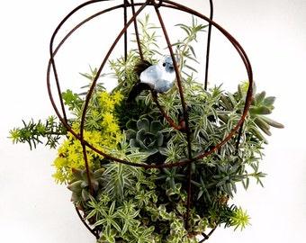 """Hanging Metal Birdcage Succulent Planter - Rustic Standing Plant Centerpiece  - Indoor or Outdoor - 14"""" x 8"""""""