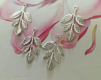 Silver Olive Leaf Fronds ( 3 pc)