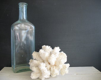 Vintage Coral - Nautical - Ocean - Beach