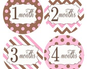 Baby Month Stickers, Monthly Milestone Stickers, Pink Polka Dot Baby Stickers, Infant Stickers Monthly Baby Stickers, Bodysuit Stickers #703