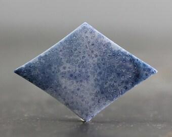 Blue Coral Diamond Natural Beachstone, Ocean, Sea, Necklace Bracelet Charm Earring Sea Oceanic Cabochons, Organic Jewellry, Loose