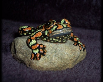 Burrowing Frog, hand sculpted on a rock and painted to resemble the life like amphibian