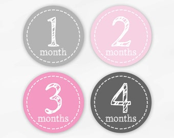 Baby Monthly Stickers for Photos - Pink and Gray Set of Waterproof Tear Resistant Stickers for Baby Girl (6001-2)