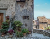 "Italy Photography, ""Italian Cat in the Window"", Travel Photography, Anghiari, Tuscany Photo, Customizable Sizes"