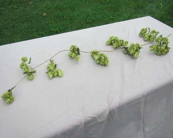 Natural Hops Vine   3 Ft Long, Dried Hops ,Garland, Wedding Table Hops