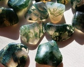 "Moss Agate Tumbled Stones 3 Polished Crystals 13mm - 23mm / .5""-.9"" Natural crystal Agate"