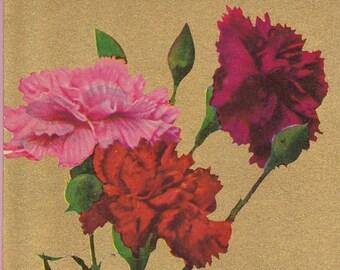 "Ca. 1912 ""Carnations"" Friendship Greetings Post Card - 872"