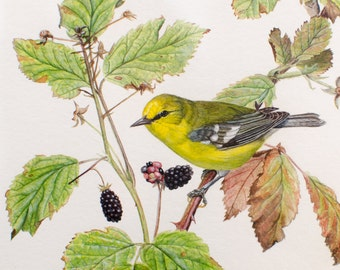 Vintage Original Watercolor Elizabeth Horning American Artist Signed Bird on a Branch Painting - 1979