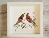 Wall art print botanical print Original pressed flower art Love birds Wall art illustration Bird prints Framed wall decor Dried flowers