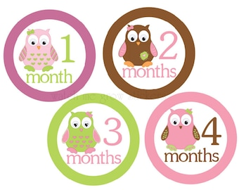 Baby Monthly Stickers Girl Owls Milestone Stickers Baby Month Stickers