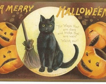 Antique Halloween Ellen Clappsaddle Postcard Black Cat Pumpkins