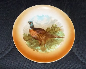 Beautiful Vintage Hand Painted Bavarian Game Plate with Ring Neck Pheasant