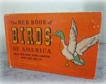 antique book / the red book of birds of america / small & lovely gift / bird watchers / color illustrations