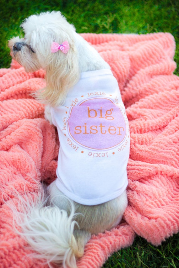 Big Sister Dog Shirt Personalized Custom Name Big Little Sister Brother Puppy Dog Pet Tee T Shirt