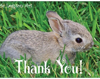 Tiny Baby Bunny Thank You Greeting Cards- Note Cards. Includes White Envelopes. Blank Inside.