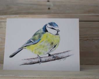Blank Bluetit Greeting Card