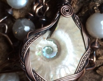 Iridescent Ammonite with Blood Moonstone - gobc0071