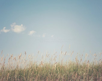 Prairie Grass, Prarie Photography, North Dakota art, Wild West Art, Travel Photography, Summer print, Nature Photography, Natural Decor