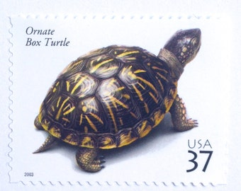 5 Unused Turtle Postage Stamps // Ornate Box Turtles // Postage Stamps for Mailing