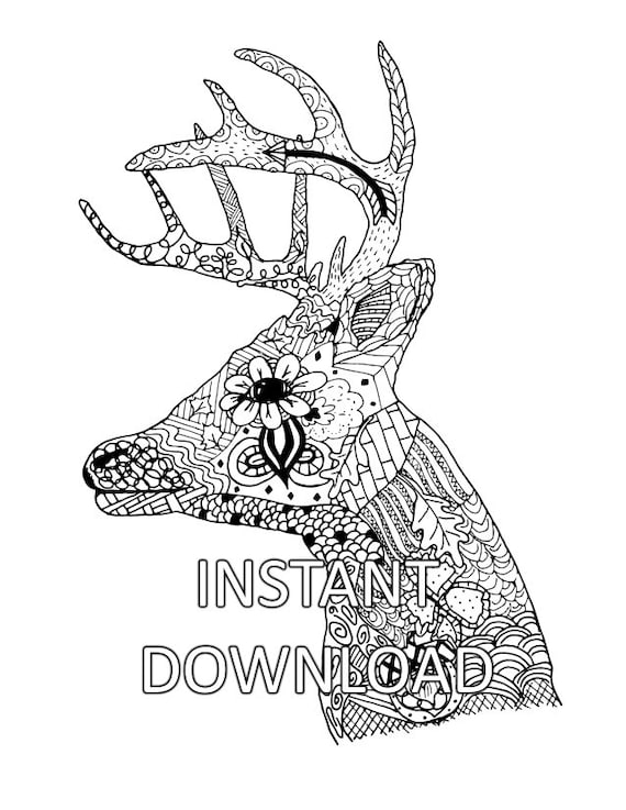 Coloring Page, Coloring Sheet, Deer Head, Animal Coloring, Adult Coloring,  Hand Drawn Printable