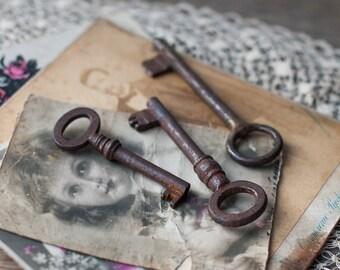 Lot of 3 Antique Skeleton Keys, Vintage Rusty Keys, Old Key Set