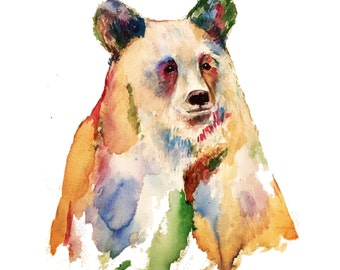 Colour Bear