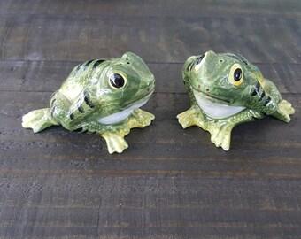 Ceramic Frog Salt and Pepper Shakers