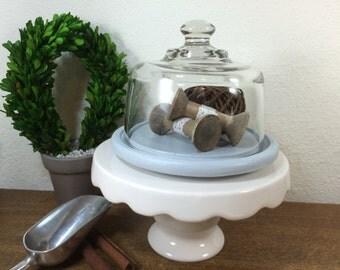 Decorative Glass Dome *FREE SHIPPING* Gray Glass Cloche, Glass Dome Display
