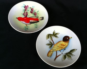 Two Small Porcelain Ceramic Decorative Plates With Brightly Colored Birds Wall Decor