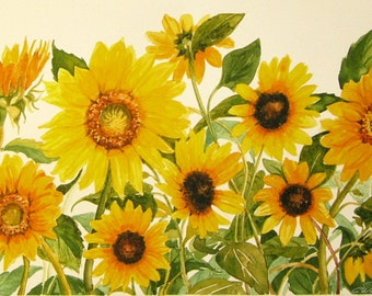 Sunflowers print of original watercolor sunflower garden botanical bright yellows and oranges yellow and green