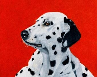 Dalmation Dog Print - Black White & Red, Animal Artist, Animal Giclee Prints, Dog Prints,
