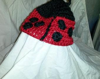 15-35 lady bug hat