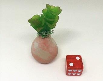 Mini Polymer Succulent