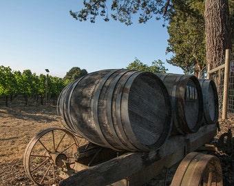 Photography of Wine Barrels at Vineyard Sebastopol, Sonoma, California, wine, grapes, rustic decor, vineyard art, wine decor, home decor