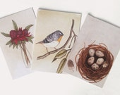 Greeting Card. Set of 3 A6 Blank Greeting Cards. Artwork by Jennifer Magno on Etsy.