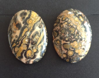 Vintage Leopard Skin Jasper Clip-on Earrings